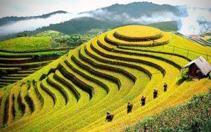 241014_越南遗产图片展展出100幅优秀作品 2 (VOH)